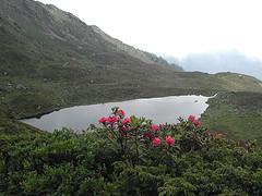 Lago centrale